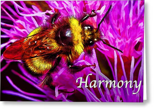 Pink And Lavender Greeting Cards - Big Busy Bumble - Harmony 2 Greeting Card by Bill Caldwell -        ABeautifulSky Photography