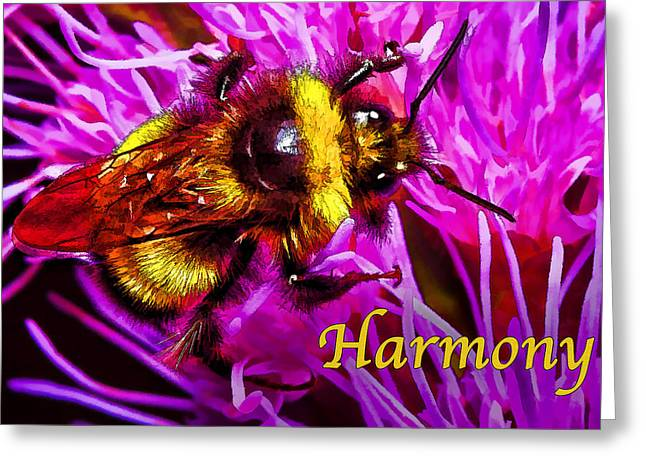 Pink And Lavender Greeting Cards - Big Busy Bumble - Harmony Greeting Card by Bill Caldwell -        ABeautifulSky Photography