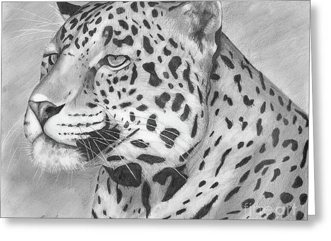 Leopard Drawings Greeting Cards - Big Cat Greeting Card by Lena Auxier