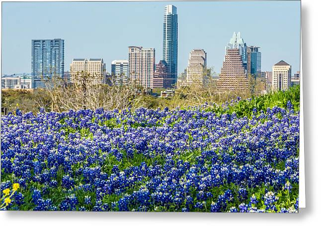 Frost Tower Greeting Cards - Big City Bluebonnets Greeting Card by Wally Taylor