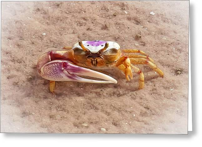 Fiddler Crab Greeting Cards - Big Claw Greeting Card by Patrick M Lynch