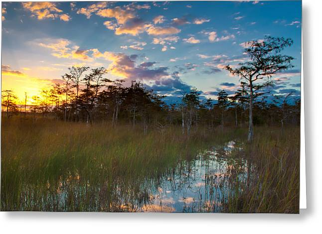 Watershed Greeting Cards - Big Cypress Sunrise Greeting Card by Rich Leighton