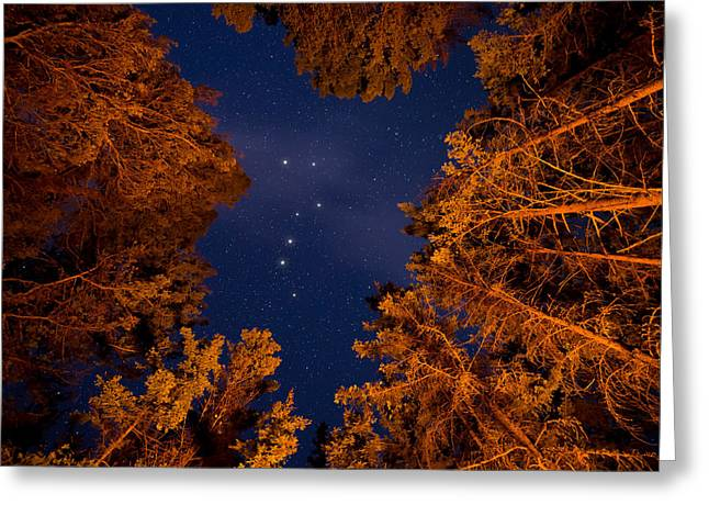 Big Dipper Greeting Card by James Wheeler