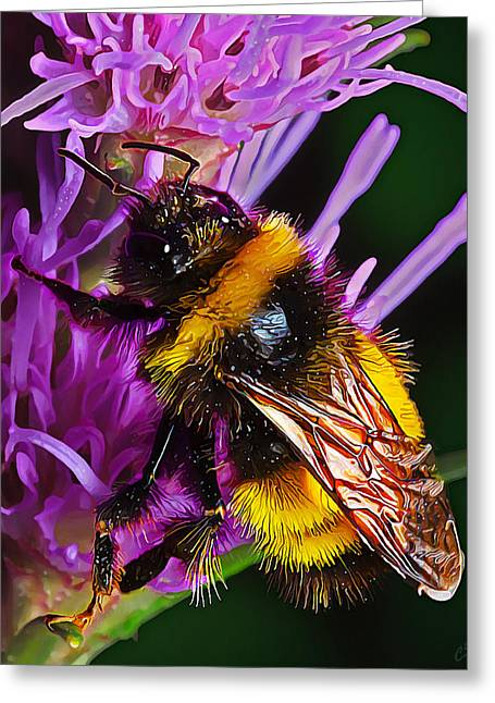 Floral Digital Art Digital Art Greeting Cards - Big Dusty Bumble Greeting Card by Bill Caldwell -        ABeautifulSky Photography