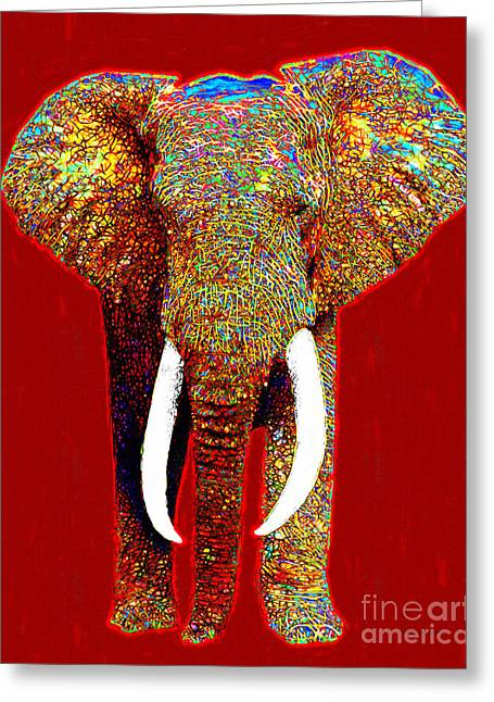 Happy Elephant Greeting Cards - Big Elephant 20130201p0 Greeting Card by Wingsdomain Art and Photography