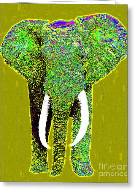 Happy Elephant Greeting Cards - Big Elephant 20130201p60 Greeting Card by Wingsdomain Art and Photography