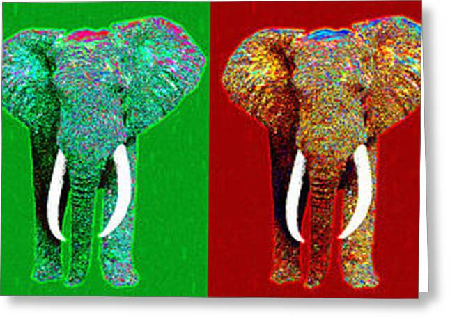 Happy Elephant Greeting Cards - Big Elephant Six 20130201 Greeting Card by Wingsdomain Art and Photography