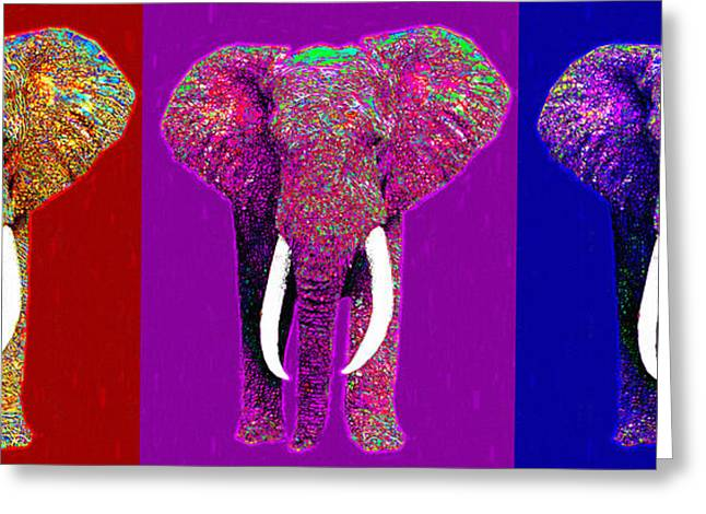 Happy Elephant Greeting Cards - Big Elephant Three 20130201v2 Greeting Card by Wingsdomain Art and Photography