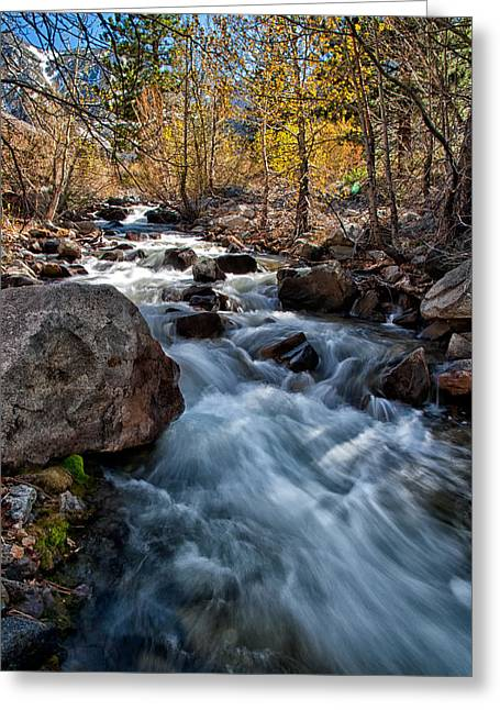 Creek Greeting Cards - Big Pine Creek Greeting Card by Cat Connor
