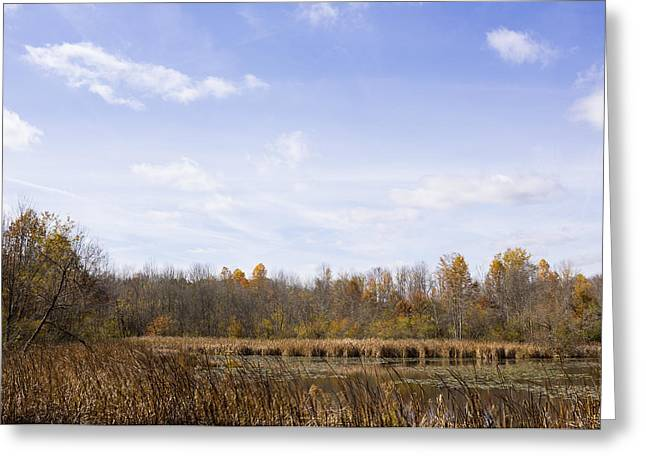 Pond In Park Greeting Cards - Big Sky Over Pond  Greeting Card by Tim  Fitzwater