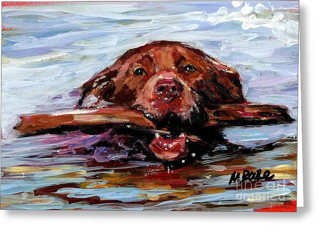 Chocolate Lab Greeting Cards - Big Stick Greeting Card by Molly Poole