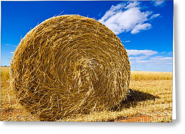 Big Straw Bales Greeting Card by Boon Mee