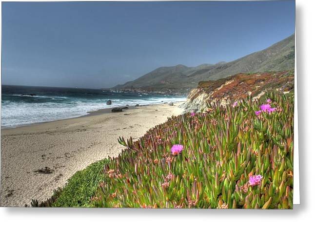 Big Sur Greeting Cards - Big Sur Beach Greeting Card by Jane Linders