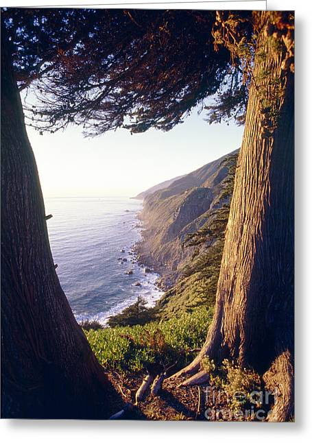 Big Sur California Greeting Cards - Big Sur Coast at Ragged Point  Greeting Card by George Oze