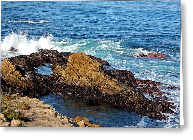 Big Sur California Greeting Cards - Big Sur - Coastal View Greeting Card by Suzanne Gaff