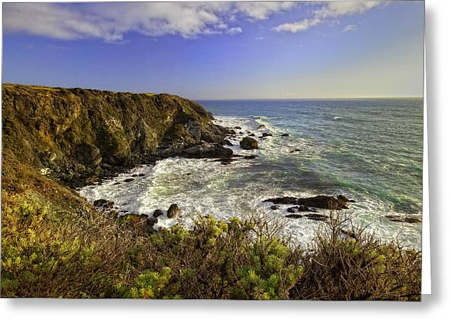 Big Sur California Greeting Cards - Big Sur Coastline Greeting Card by Lynn Andrews
