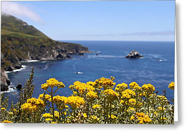 Big Sur Greeting Cards - Big Sur Loves Yellow by Diana Sainz Greeting Card by Diana Sainz