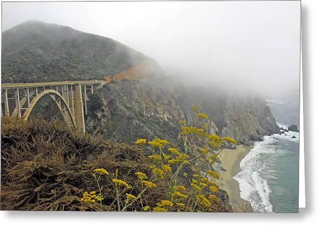 Coast Highway One Greeting Cards - Big Sur  Pacific Coast Highway   California Greeting Card by Willie Harper