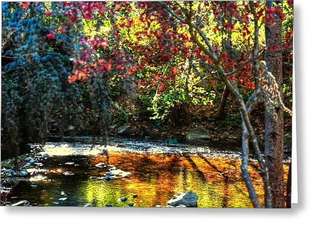 Big Sur Ca Greeting Cards - Big Sur River 19974 Greeting Card by Jerry Sodorff