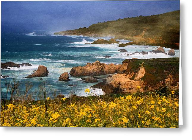 Big Sur California Greeting Cards - Big Sur Spring Beauty Greeting Card by Donna Kennedy