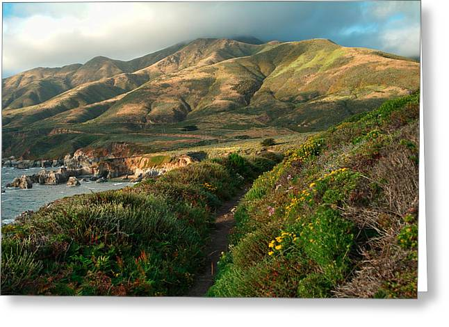 Big Sur Greeting Cards - Big Sur Trail at Soberanes Point Greeting Card by Charlene Mitchell