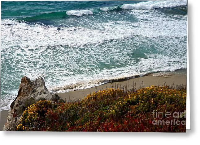 Big Sur California Greeting Cards - Big Sur Waves Greeting Card by Rincon Road Photography