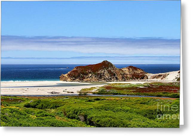 Pch Greeting Cards - Big Sur White Sands by Diana Sainz Greeting Card by Diana Sainz