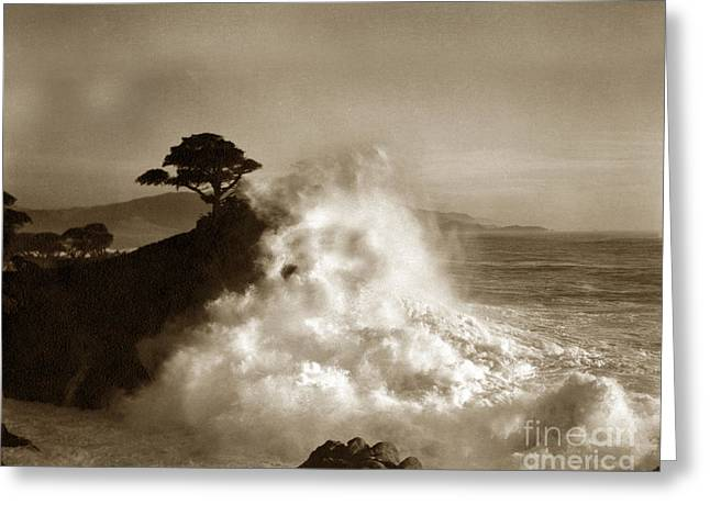 The Lone Cypress Greeting Cards - Big Wave hitting the Lone Cypress Tree Pebble Beach California 1916 Greeting Card by California Views Mr Pat Hathaway Archives