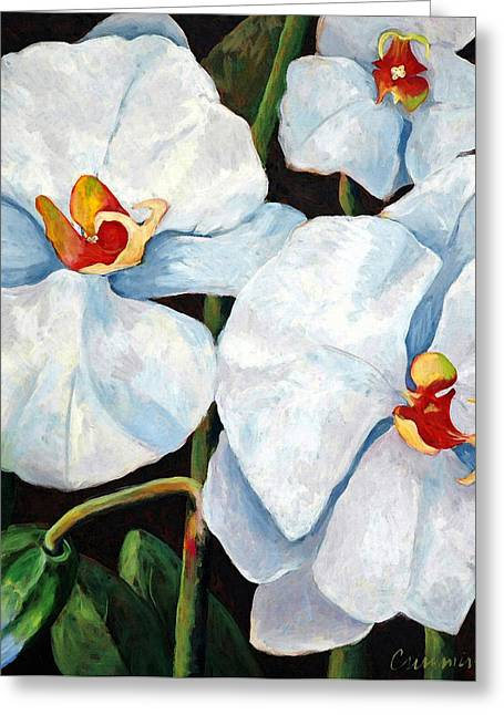 Rich Countries Greeting Cards - Big White Orchids - Floral Art By Betty Cummings Greeting Card by Betty Cummings