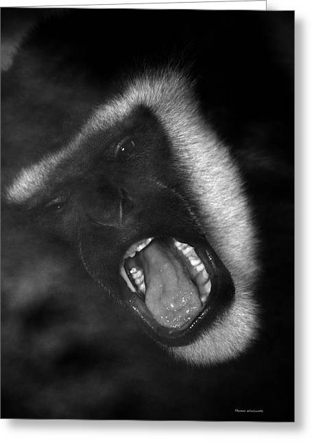 Big Yawn From This Monkey Greeting Card by Thomas Woolworth