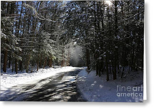 Union Connecticut Greeting Cards - Bigelow Hollow Falling Snow   Greeting Card by Neal  Eslinger