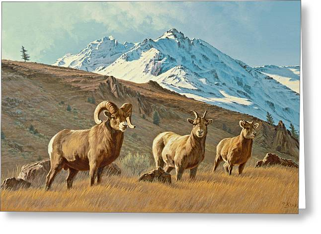 Bighorn Greeting Cards - Bighorn Below Electric Peak Greeting Card by Paul Krapf