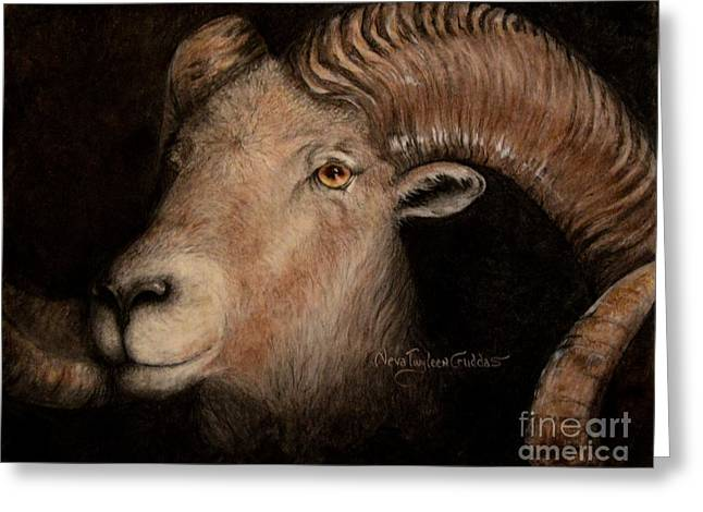 Split Drawings Greeting Cards - Bighorn Greeting Card by Neva Cruddas