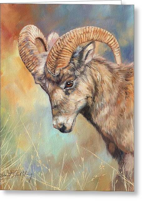Bighorn Greeting Cards - Bighorn Sheep Greeting Card by David Stribbling