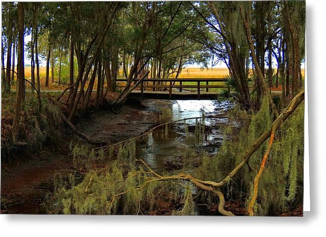 Tidal Creek Scene Greeting Cards - Bike Bridge Greeting Card by Laura Ragland