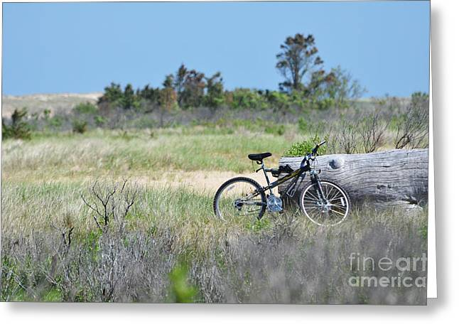 And Sand-mix Greeting Cards - Bike in the Dunes - East Hampton Greeting Card by Anahi DeCanio - ArtyZen Studios