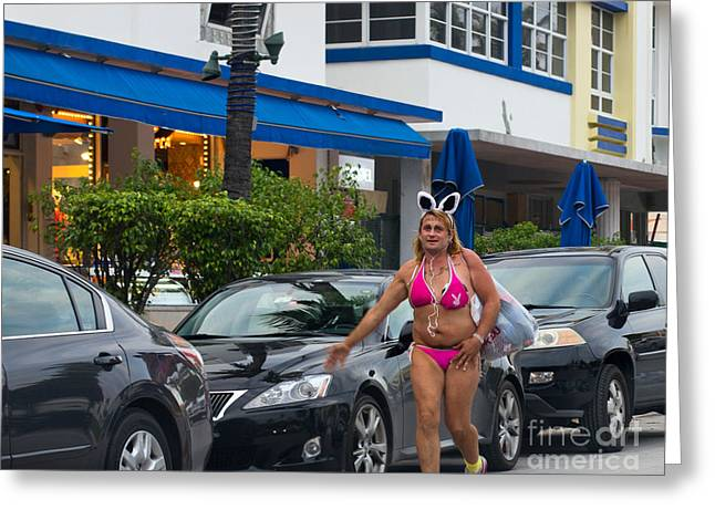 Playboy Bunny Greeting Cards - Bikini Bunny in Miami Greeting Card by Les Palenik