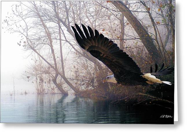 Fog Mixed Media Greeting Cards - Bilbows Eagle Greeting Card by Bill Stephens