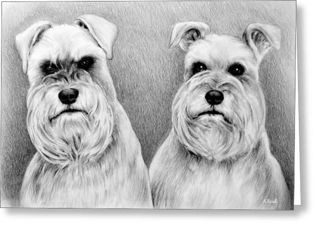Graphite Digital Greeting Cards - Billy and Misty Greeting Card by Andrew Read