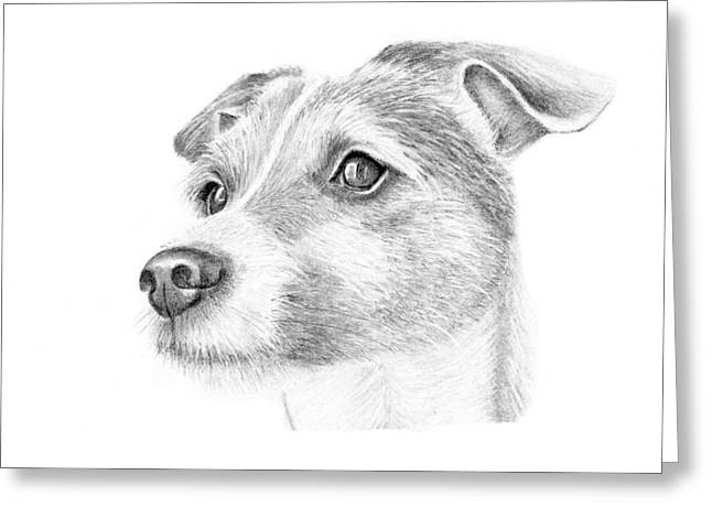 Mary Mayes Greeting Cards - Billy Greeting Card by Mary Mayes