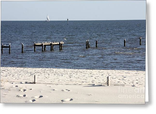 Biloxi Greeting Cards - Biloxi Beach Greeting Card by Carol Groenen