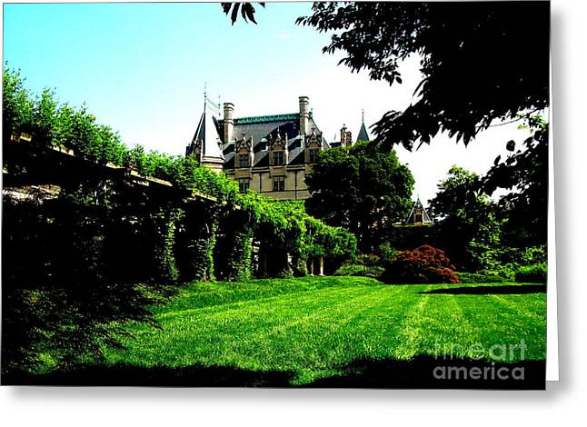 Chateau Greeting Cards - Biltmore Distance Greeting Card by Darrin Diaz