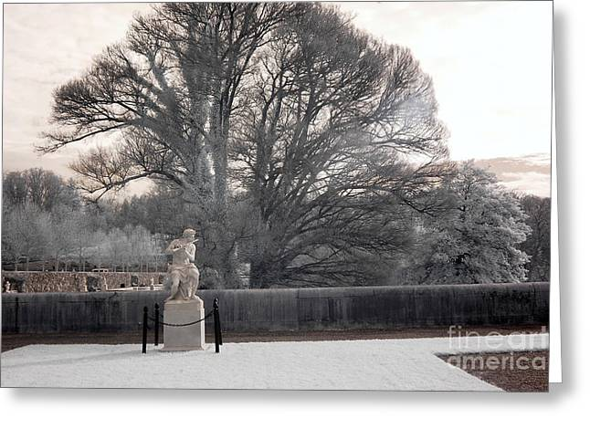 The Houses Photographs Greeting Cards - Biltmore Estate House Italian Garden Terrace Statues  Greeting Card by Kathy Fornal