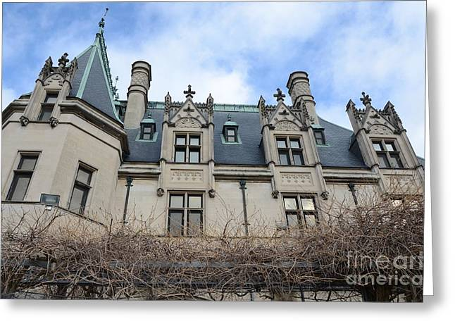 Nature Pyrography Greeting Cards - Biltmore House side view Greeting Card by Adelmo Leite de Sa