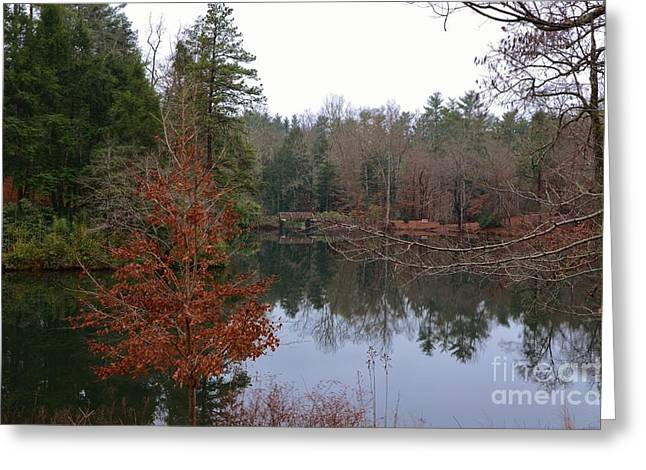 Lake House Pyrography Greeting Cards - Biltmore Lake Greeting Card by Adelmo Leite de Sa