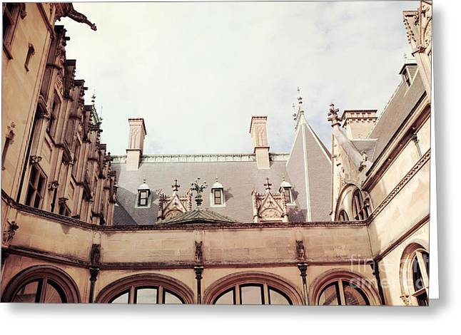 Building Detail Greeting Cards - Biltmore Mansion Estate Rooftop Architecture - Italian Ornate Facade and Gargoyles Greeting Card by Kathy Fornal