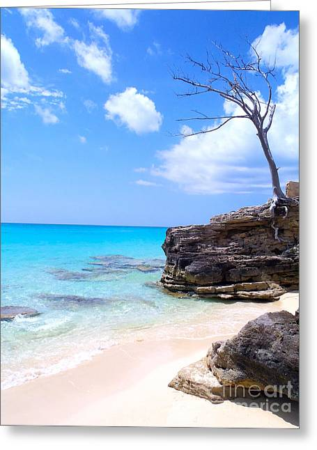 Caribbean Island Greeting Cards - Bimini Beach Greeting Card by Carey Chen