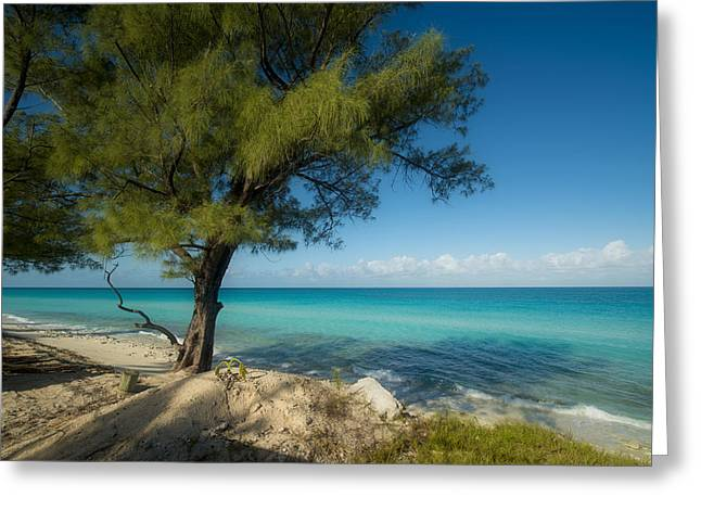 My Ocean Greeting Cards - Bimini Beach  Greeting Card by Kevin Cable