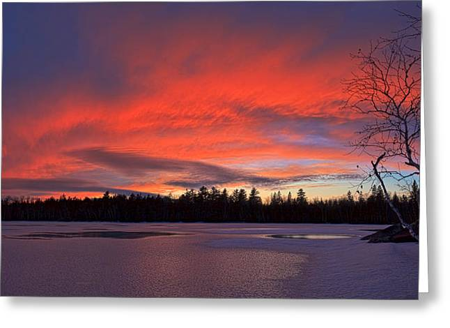Snow Scene Landscape Greeting Cards - Birch Point Sunset Panorama Greeting Card by Bill Caldwell -        ABeautifulSky Photography