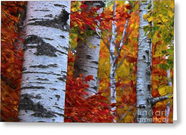 Ghostly Greeting Cards - Birch Stand Autumn Greeting Card by Henry Kowalski